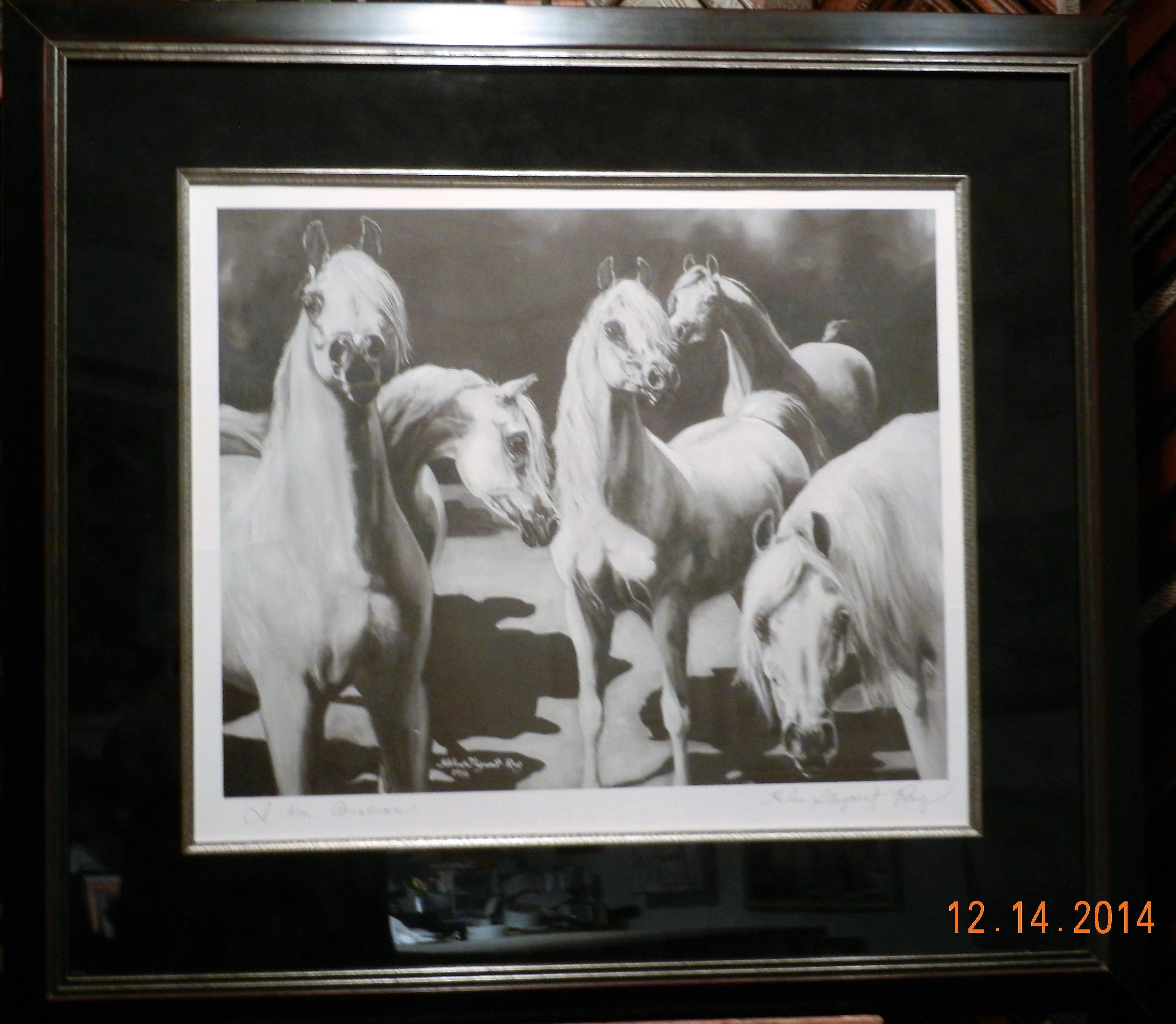 Arabian Horses/Silver Fillet